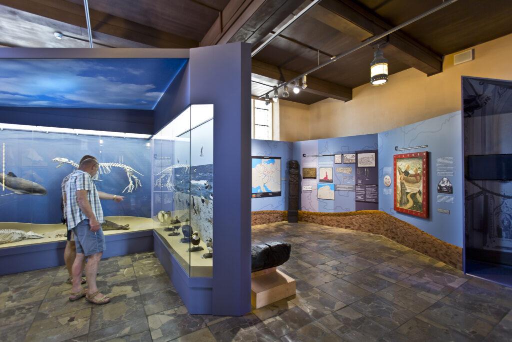 Ekspozycja Muzeum Rybołówstwa w Helu prezentująca faunę bałtycką oraz ślady najstarszego osadnictwa nad Bałtykiem.